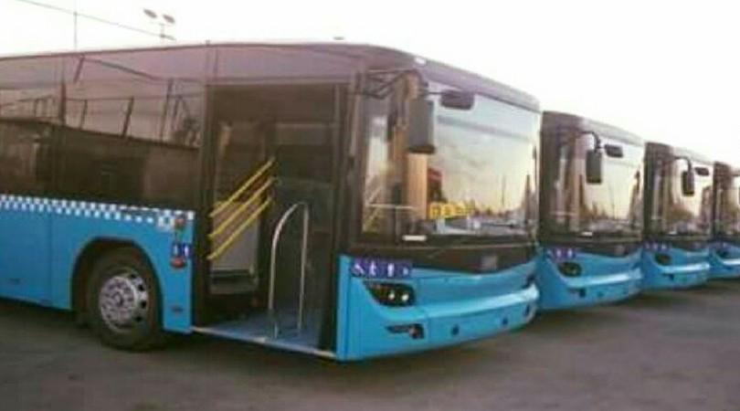 Antalya'nın Mücadeleyi Öğreten 7 Otobüsü